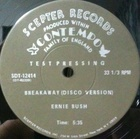 Ernie Bush / Breakaway () Scepter, contempo